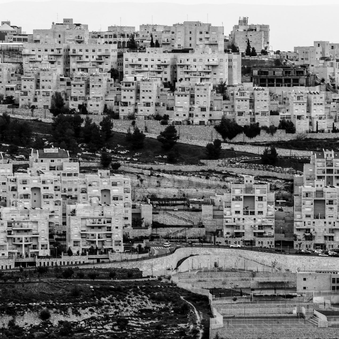 The space of the conflict in Jerusalem. That is, distinguishing the wood from the trees